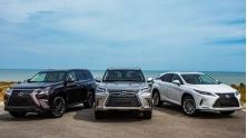 Bang gia xe Lexus 2021